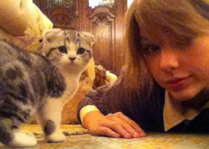 taylor-swift-cat-lady.jpg