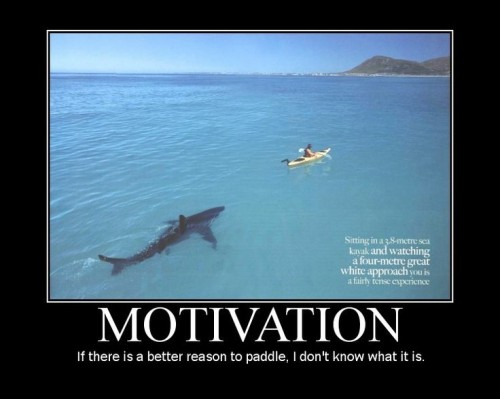 Funny-Inspirational-Motivation-Image.jpg