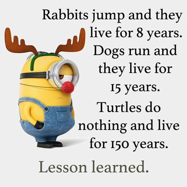 Cool Funny Quotes Live 150 Years Funny Phrases Funny Sayings About Life Imgling