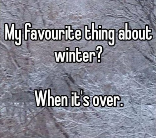 funny-winter-over-564x500.jpg