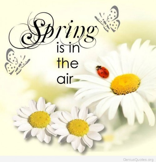 Spring-is-in-the-air.jpg