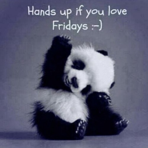 Happy-Friday-Panda.jpg