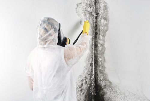 Best-Mold-and-Asbestos-Removal-Company---Canadas-Restoration-Services.png