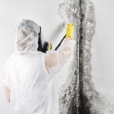 Best-Mold-and-Asbestos-Removal-Company---Canadas-Restoration-Services